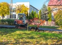 Rewitalizacja terenów zielonych w ul. Nowy Rynek w Gąbinie