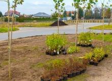 Kolejny projekt poprawiający jakość powietrza na terenie Gąbina